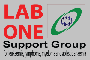 Lab-One-Support-Group-2